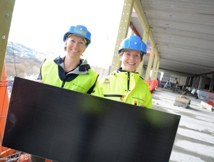 Environmental advisor and technical project manager © Undervisningsbygg Oslo KF